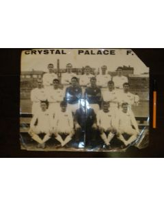 Large team photograph of Crystal Palase